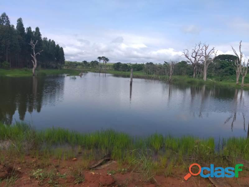 909 Alq. P/ Agricultura Estuda Prazo e 40% Permuta Em SP Com Entrada Mineiros GO 10
