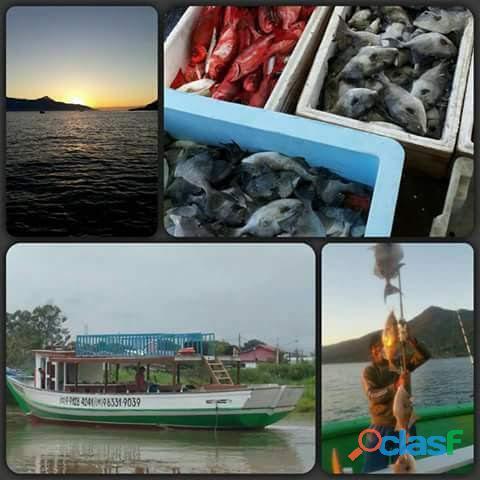 Pescaria Alto Mar Ilhabela São Sebastião