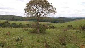 Vendo fazenda - excelente topografia quase toda plana!
