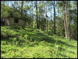 Sitio para pousada/lazer - pico marins – marmelópolis- mg