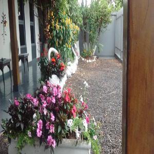 Centergarden | jardim pallets ? saulo turra | orquídeas | v