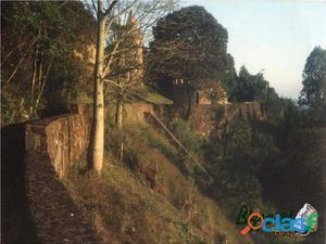 50 anos de conhecimento em muro de arrimo com pedras