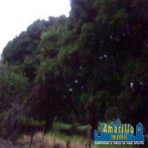 Sítio / Chácara para Venda, Saquarema / RJ, bairro