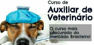 Auxiliar veterinário para zoológico ou clínica