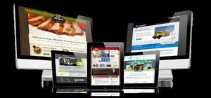 Criamos loja virtual e hospedamos