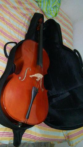 Violoncelo (cello)