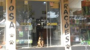 Oportunidade vendo pet shop####
