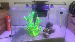 Aquário vidro curvo dolphin 50x30x30 + 2 luminárias de led