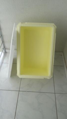 Caixa térmica, isopor grande