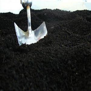 Terra preta preparada para horta ou jardim whats app