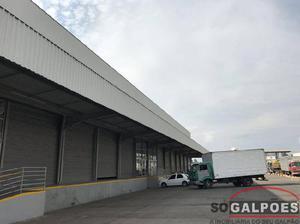 Galpão, distrito industrial jardim piemonte sul, 6 vagas