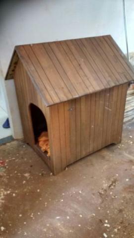 Casinha para cachorro de porte grande