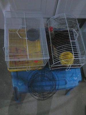 Duas lindas gaiolas de hamster