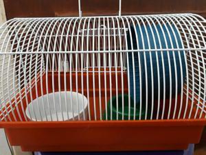 Gaiola baú para hamster, camundongo ou topolino
