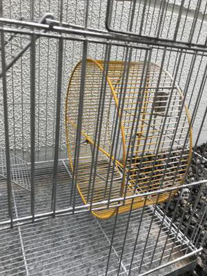 Gaiola de roedores 3 andares usada