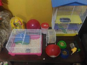 Hamster com duas gaiolas e acessorios