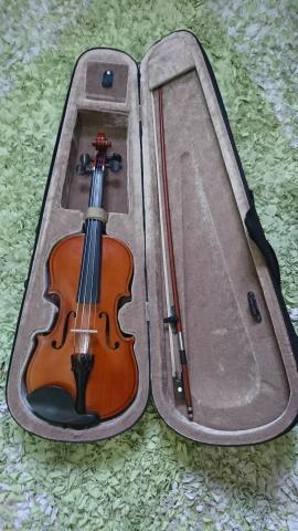 Violino p/ iniciante completo