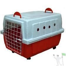 Caixa - transporte para cães e gatos - seminova