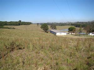 Rural para aluguel - em pineville