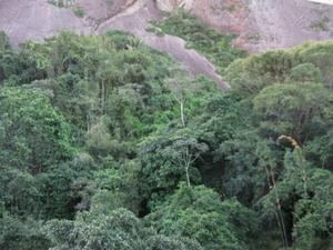 Apto copacabana excelente localização vista verde valor