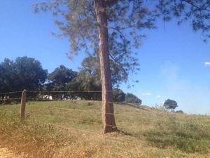 Terreno Village do Sol 585 m2 com RGI