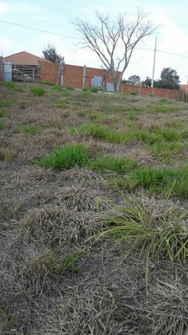 Vendo terreno 1000m2 elias fausto