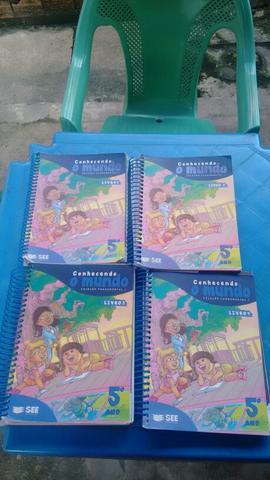 Barato! livros do colégio equipe 5°ano