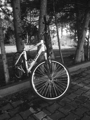 "Bike 26"" hibrida caloi sport comfort"