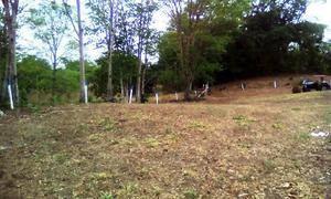 Fazenda 338 alqueires - niquelandia - goias