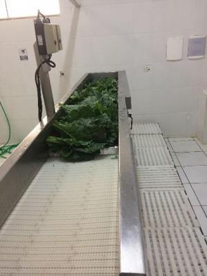 Lavadoras de vegetais - duas máquinas