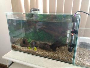 Aquário 37 litros (50x25x30cm) + aquário 7,5 litros