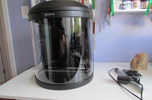 Aquário curvo boyu - 36 litros