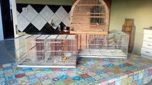 2 gaiolas criadeiras e 1 gaiola de madeira