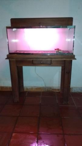 Aquário 45lts com mesa e luminária - promoção