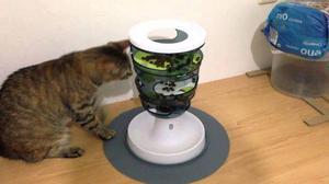 Cat it senses labirinto de alimentação gatos brinquedo