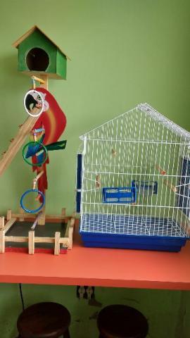 Gaiola e playground, calopsita, papagaio e periquito