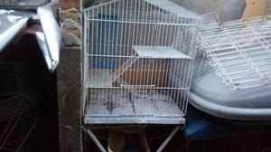 Gaiolas de roedores