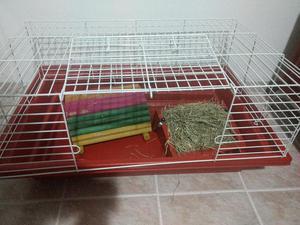 Gaiolas roedores