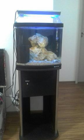 Aquario boyu marinho