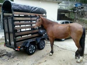 Vendo carretinha trucada e cavalo com dok e recibo
