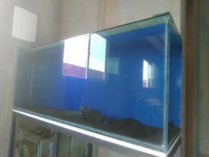 Aquario grande novo 360 lts só venda