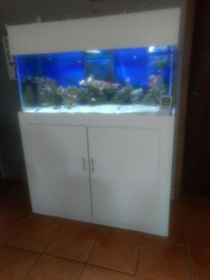 Aquário marinho 300 litros