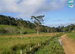 Aiquara. fazenda de alta produção com 1.127 hectares.