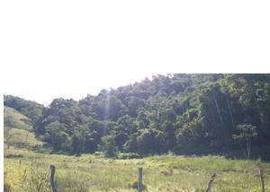 Belo sítio com lago, nascente em são josé dos campos-cód