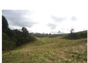 Chácara com a área 108.900,00 m2 – loc. tarumã