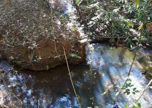 Chácara com água corrente,45km de gyn.