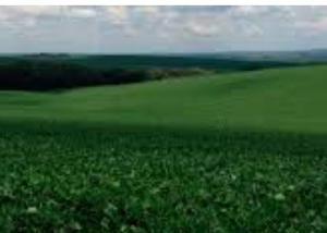 Excelente fazenda com 136 alq na região de barbosa ferraz