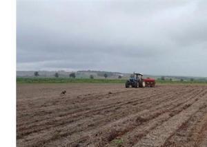 Excelente fazenda de soja com 133 alqueire em sete quedas ms