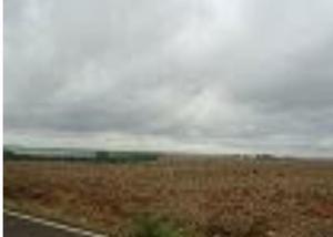 Fazenda com 350 alqueires na região de londrina pr