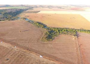 Fazenda 34.28 alqueires (166 hectares) piracanjuba-go